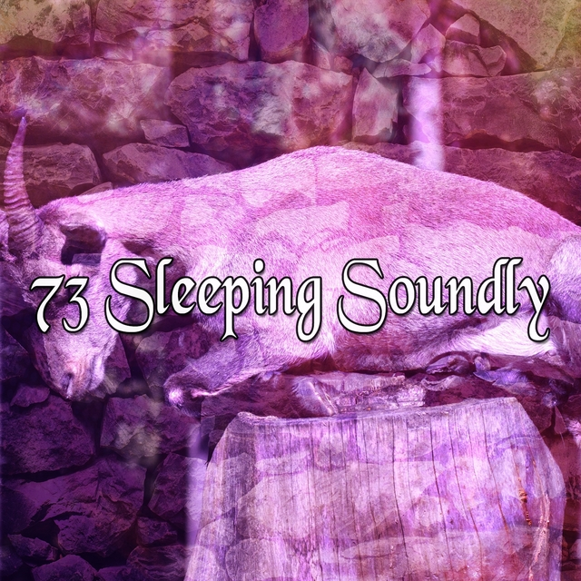 73 Sleeping Soundly