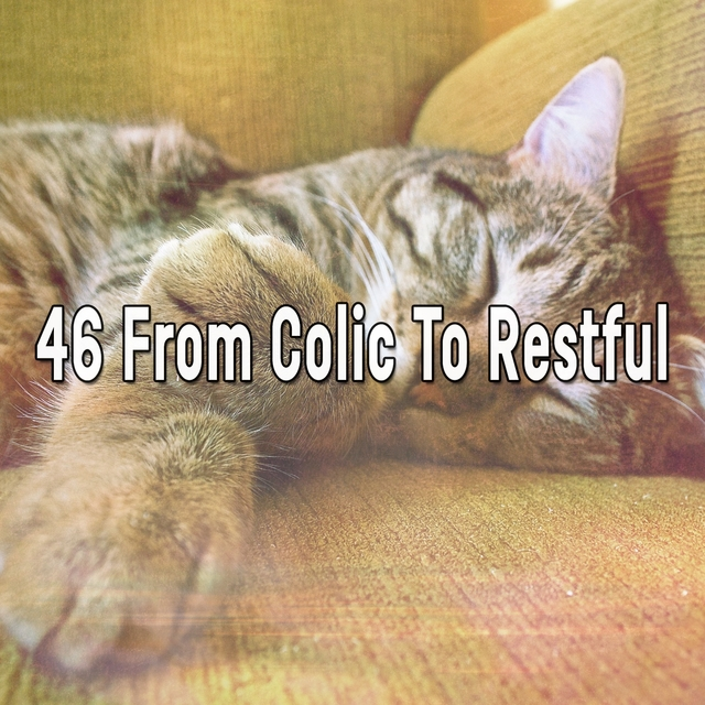 46 From Colic to Restful