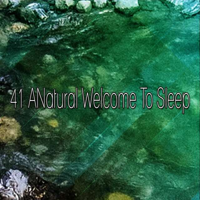 41 A Natural Welcome to Sleep