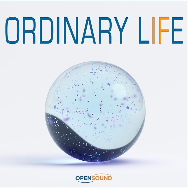 Couverture de Ordinary Life