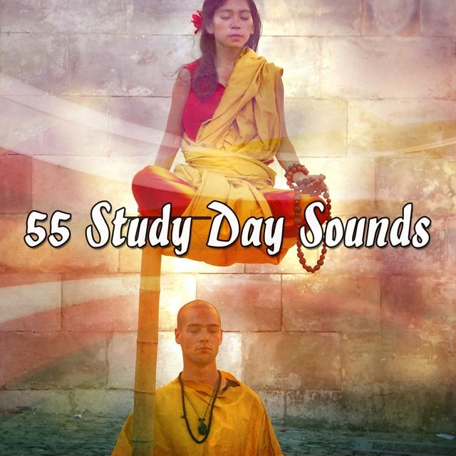 55 Study Day Sounds