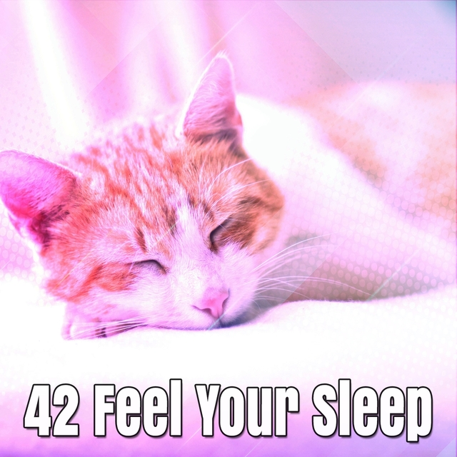 42 Feel Your Sleep