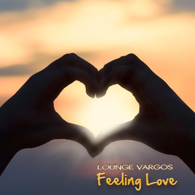 Couverture de Feeling Love