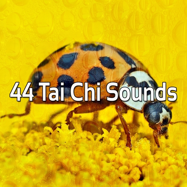 44 Tai Chi Sounds