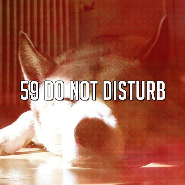 59 Do Not Disturb