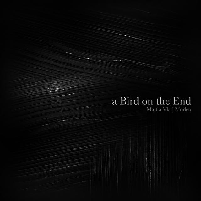 A Bird on the End