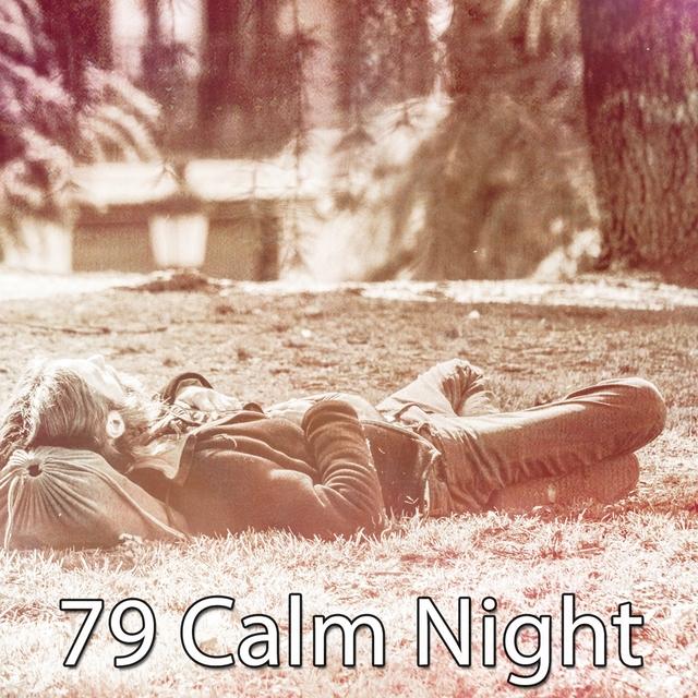 79 Calm Night