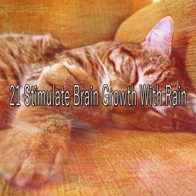 21 Stimulate Brain Growth with Rain
