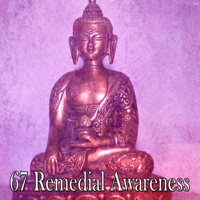 67 Remedial Awareness