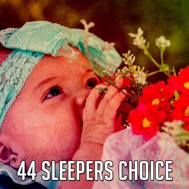 44 Sleepers Choice
