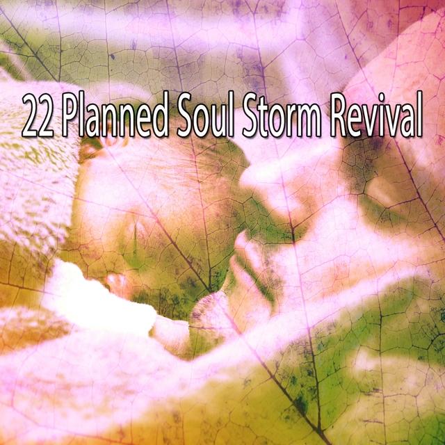 22 Planned Soul Storm Revival