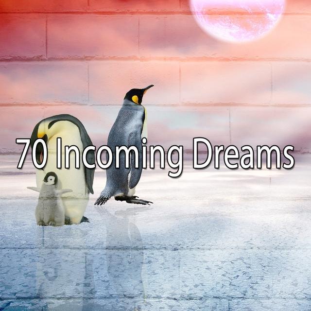 70 Incoming Dreams
