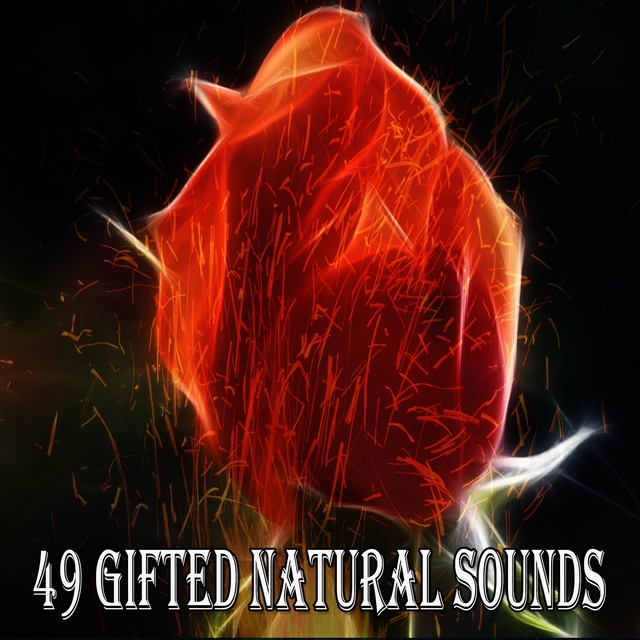 49 Gifted Natural Sounds