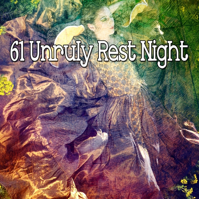 61 Unruly Rest Night