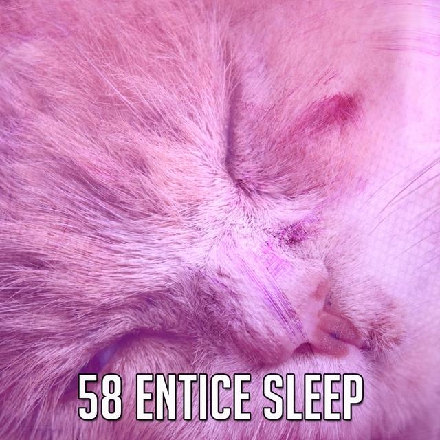 58 Entice Sleep