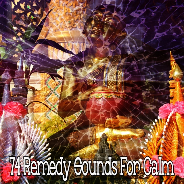 74 Remedy Sounds for Calm
