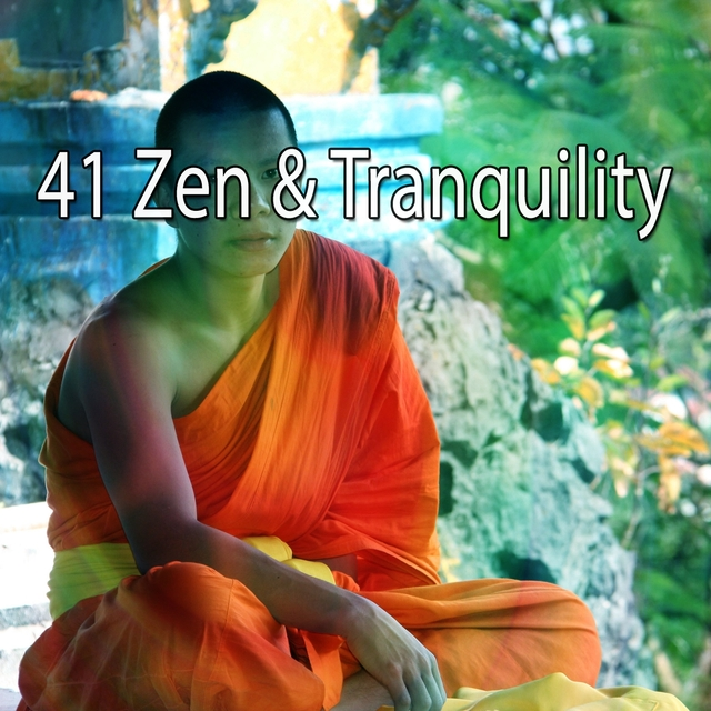 41 Zen & Tranquility