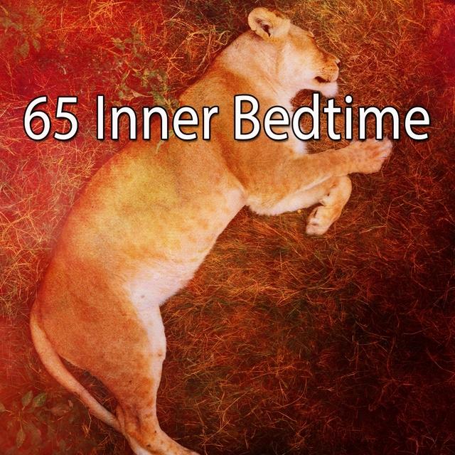 65 Inner Bedtime