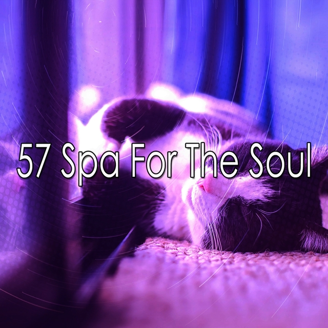 57 Spa for the Soul