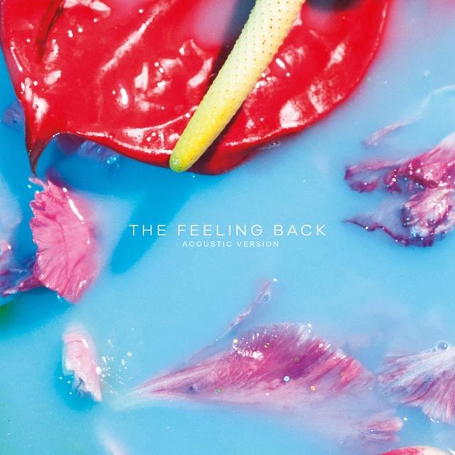 The Feeling Back