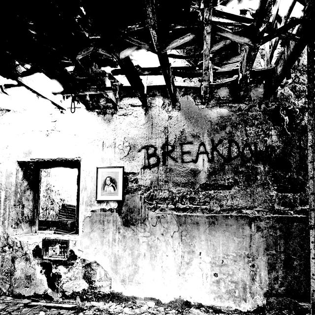 Couverture de Breakdown