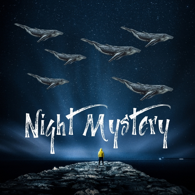 NIGHT MISTERY