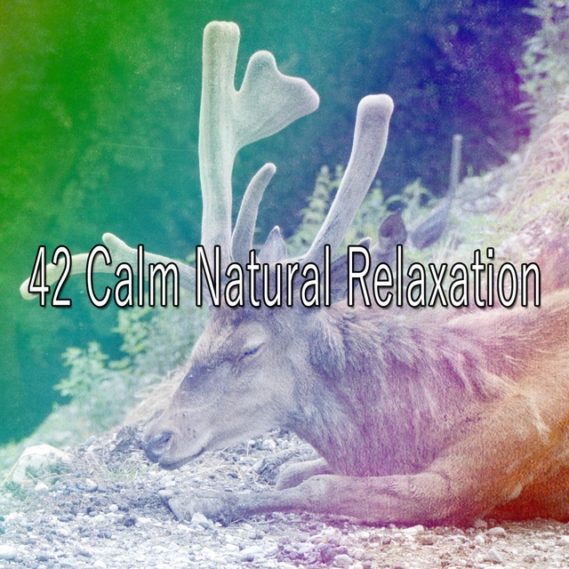 42 Calm Natural Relaxation