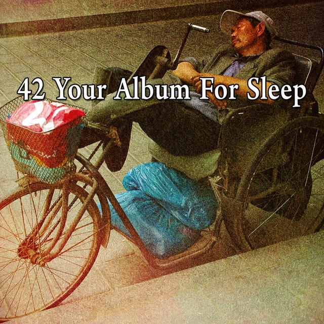 42 Your Album for Sleep