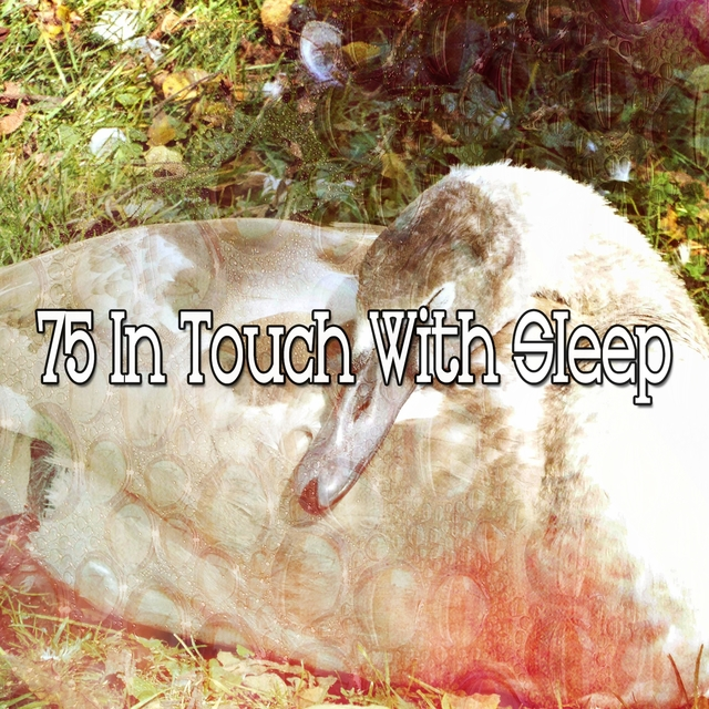 75 In Touch with Sleep
