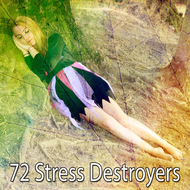 72 Stress Destroyers