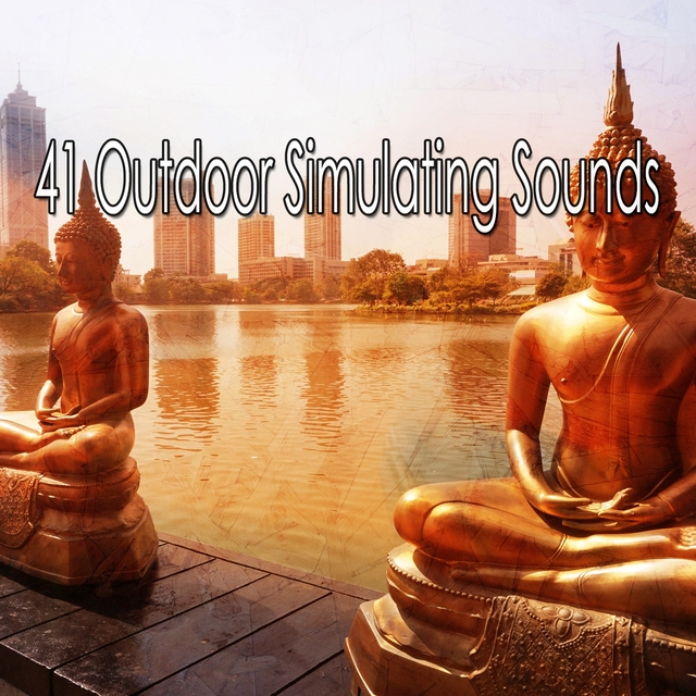 41 Outdoor Simulating Sounds