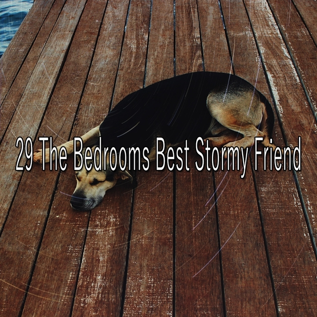 29 The Bedrooms Best Stormy Friend