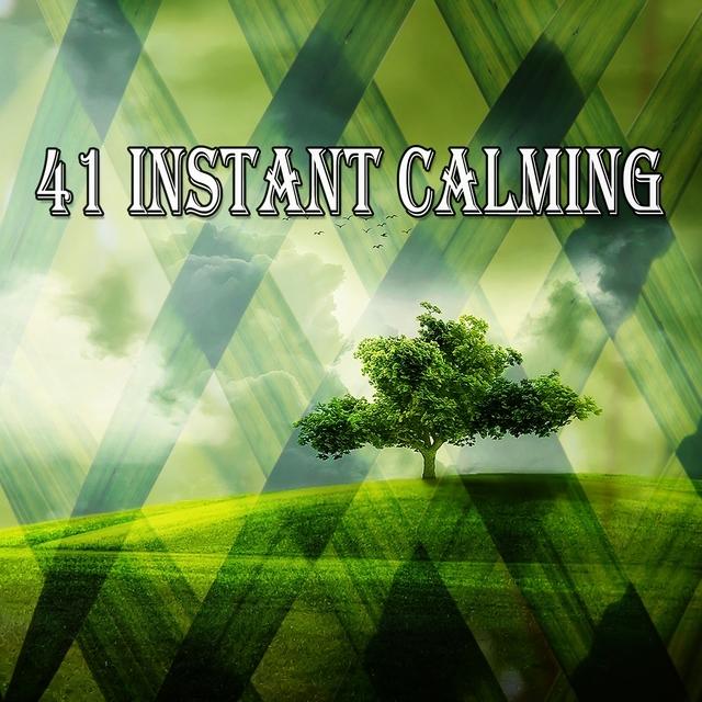 41 Instant Calming