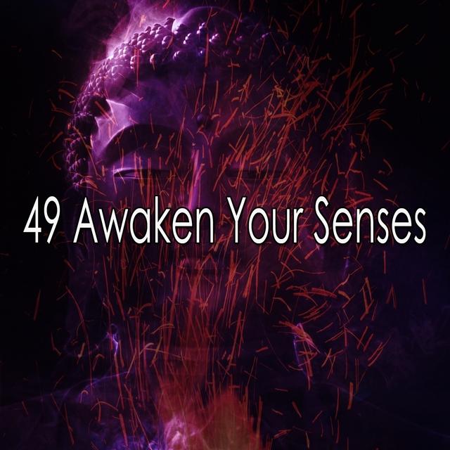 49 Awaken Your Senses