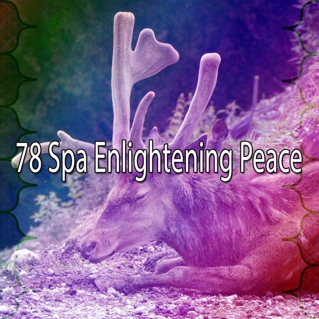 78 Spa Enlightening Peace
