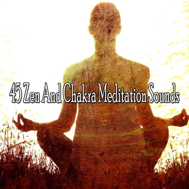 45 Zen and Chakra Meditation Sounds
