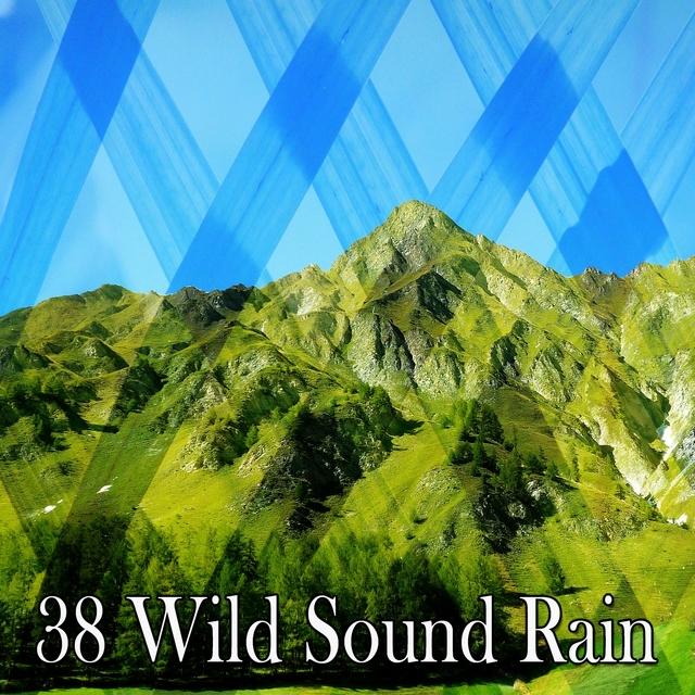 38 Wild Sound Rain