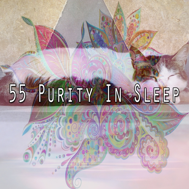 55 Purity in Sleep