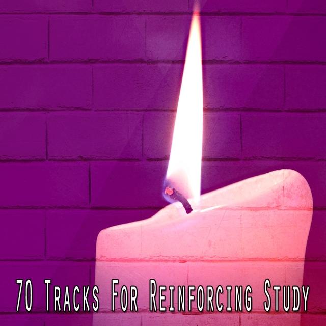 70 Tracks for Reinforcing Study