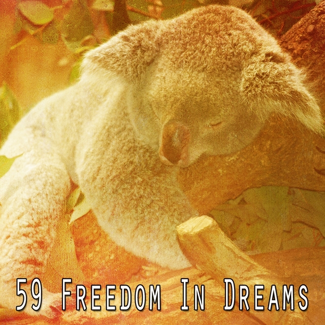 59 Freedom in Dreams
