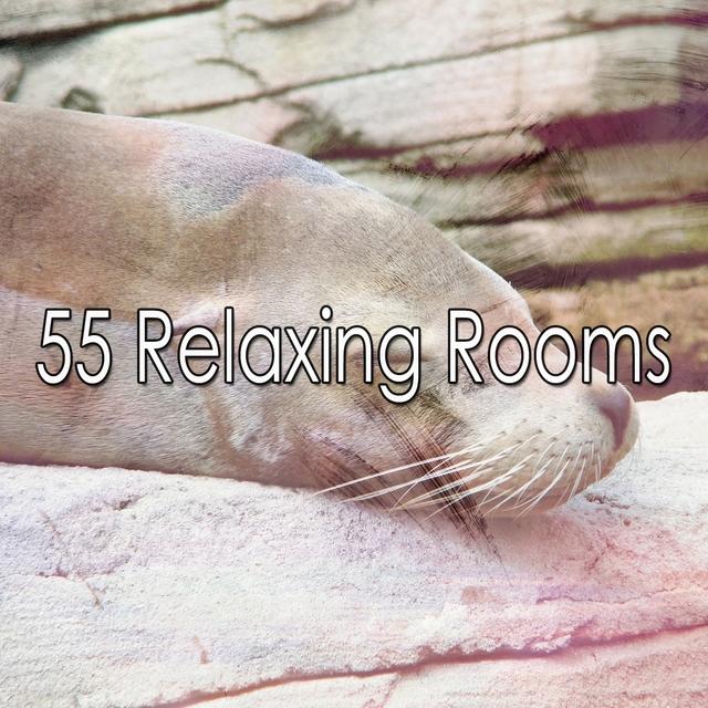 55 Relaxing Rooms