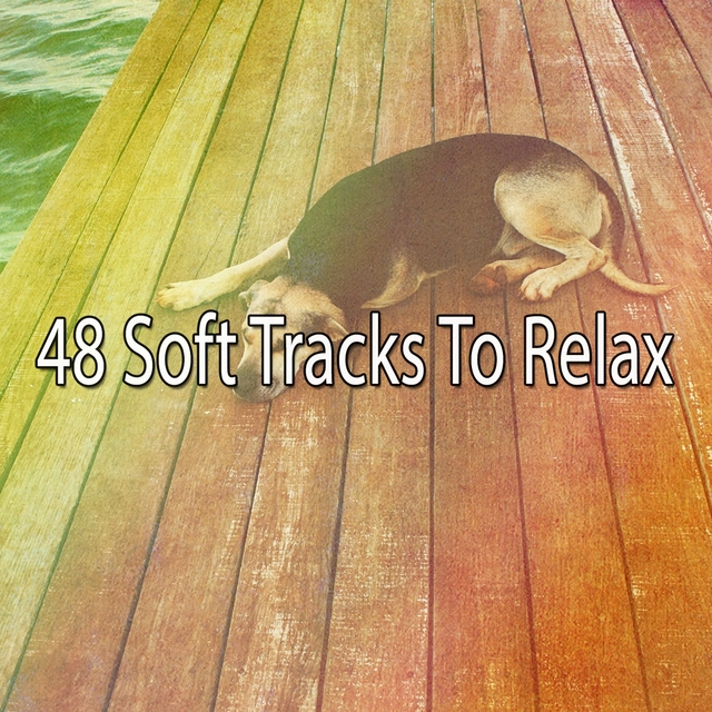 48 Soft Tracks to Relax