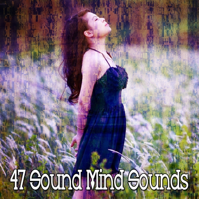 Couverture de 47 Sound Mind Sounds