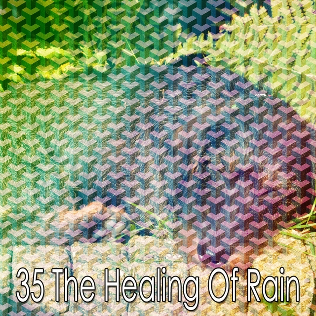 35 The Healing of Rain