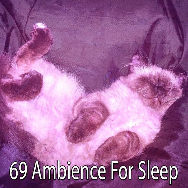 69 Ambience for Sleep