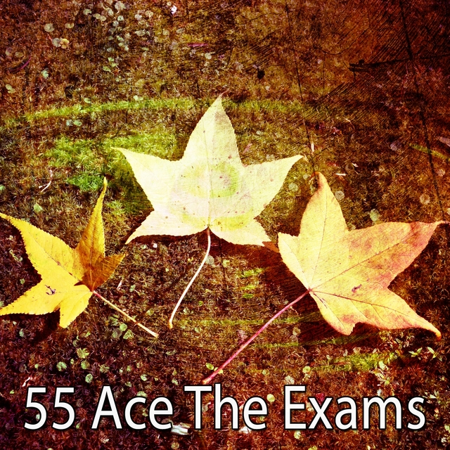 55 Ace the Exams