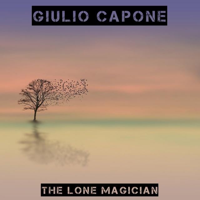 Couverture de The lone magician