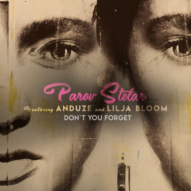 Couverture de Don't You Forget