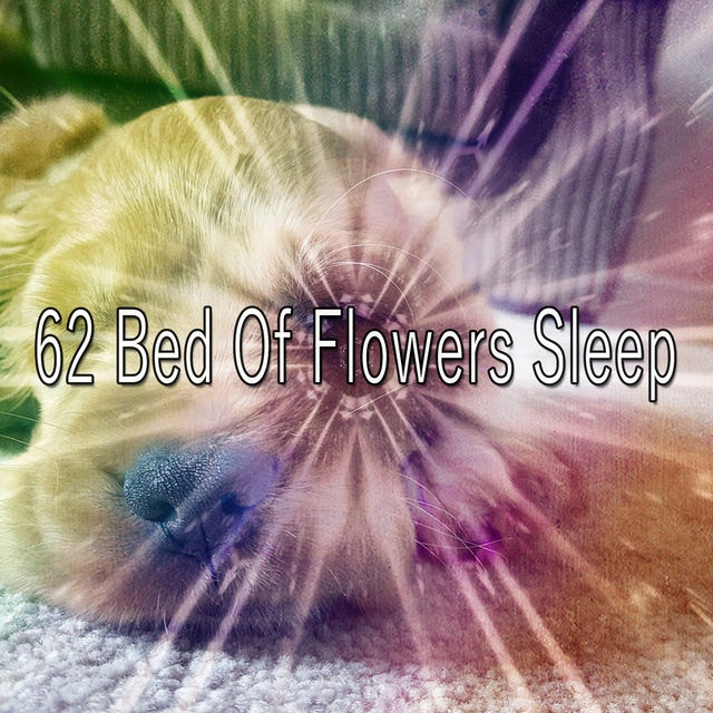 62 Bed of Flowers Sle - EP
