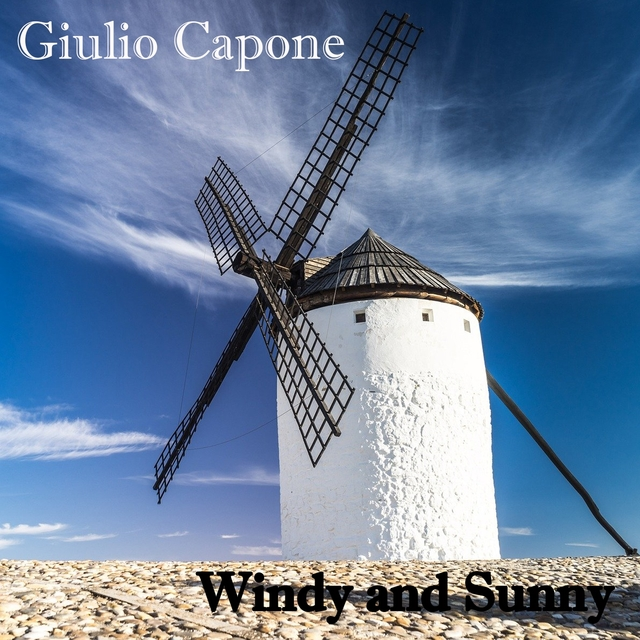 Couverture de Windy and sunny